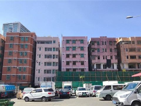 回到深圳上班后,又开始了住廉价出租房,吃炒米粉的生活了