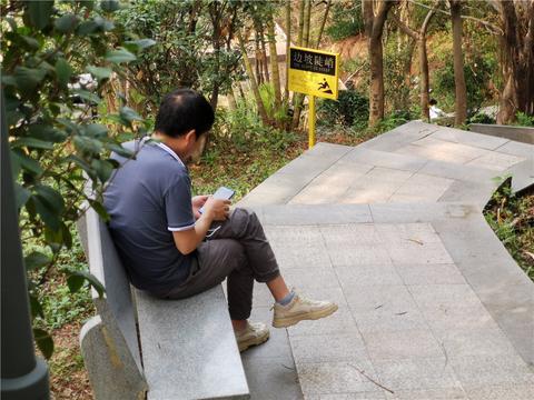 龙华某公园:一样的风景,不一样的人生