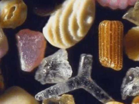 男子将沙子放到显微镜下观察,接下来让人感到不可思议