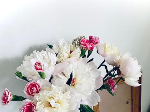 """""""急性子""""的4种花,买回家很快开花,适合新手养"""