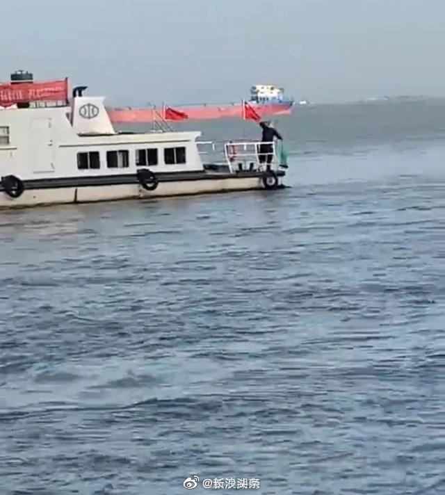 官方通报海事码头撒网捕鱼事件