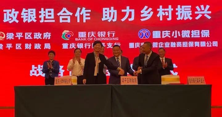 重庆推出乡村振兴保解农村小型基建燃眉之急