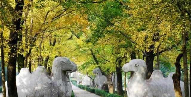 从江苏丹阳自驾去河南郑州旅游,推荐一条边走边玩的景点及路线