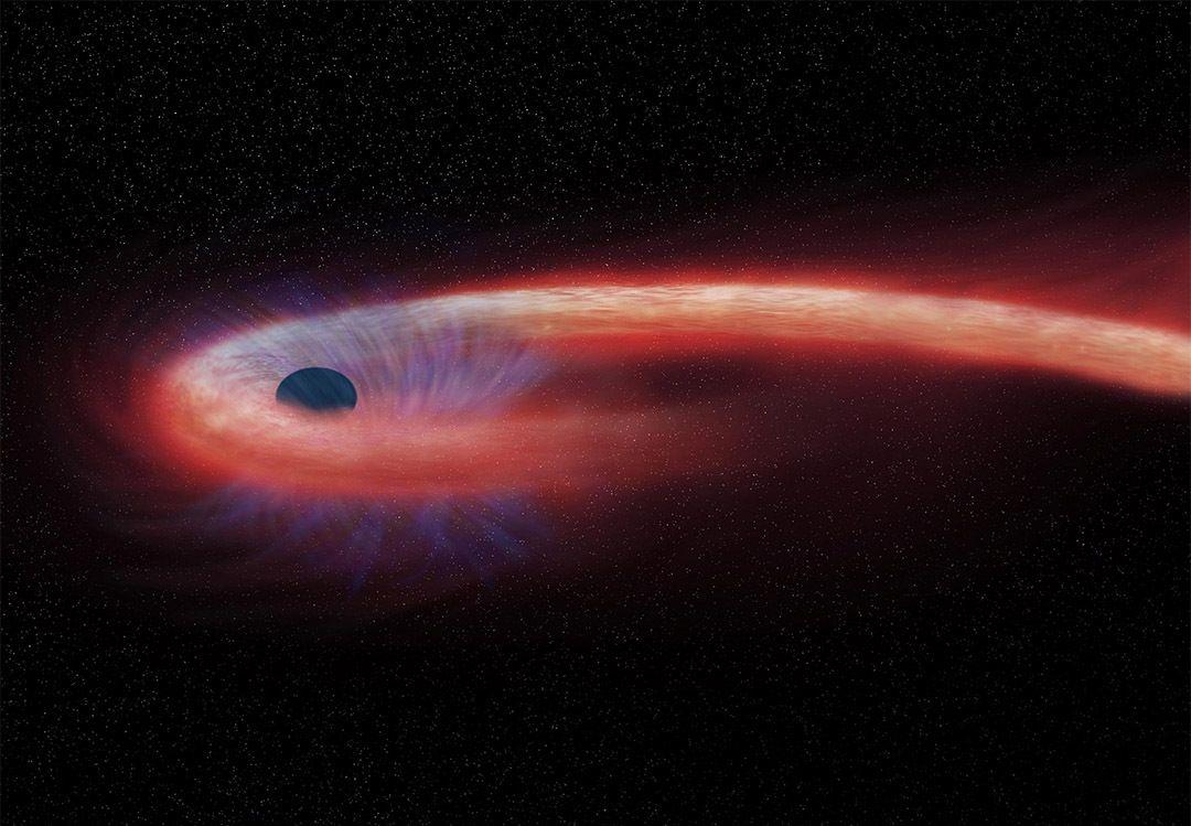 恒星被黑洞撕碎的画面,终于被天文学家捕捉到!