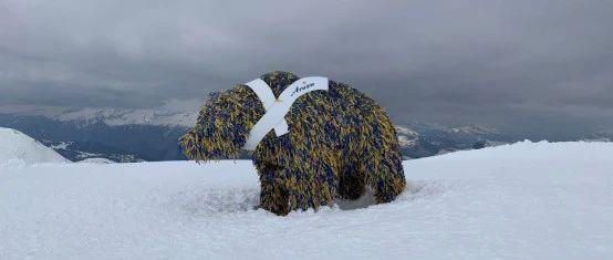 瑞士人滑雪热度,新冠也挡不住