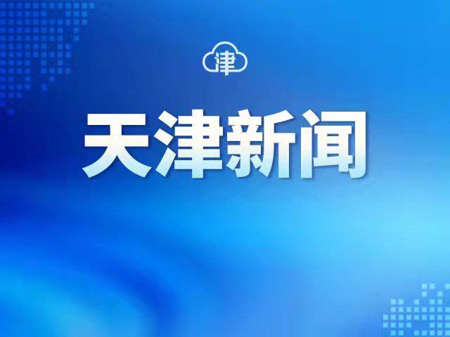 """滨海新区临时悬挂实行智能""""秒批""""新模式"""