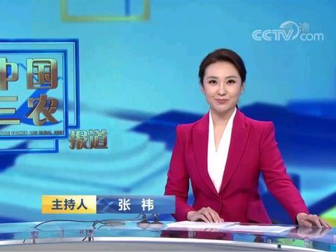 又一地方台女主持人张祎加盟央视,成《中国三农报道》首位女主播