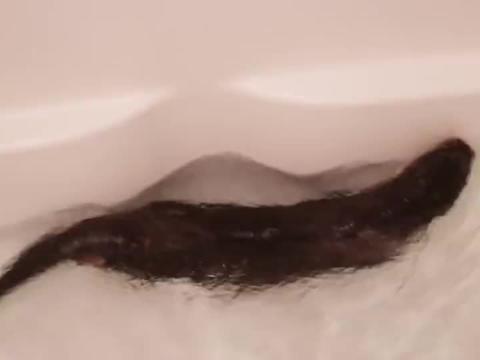 水獭在浴缸里游泳,还让主人用喷头喷它,就是要暴风雨的感觉!