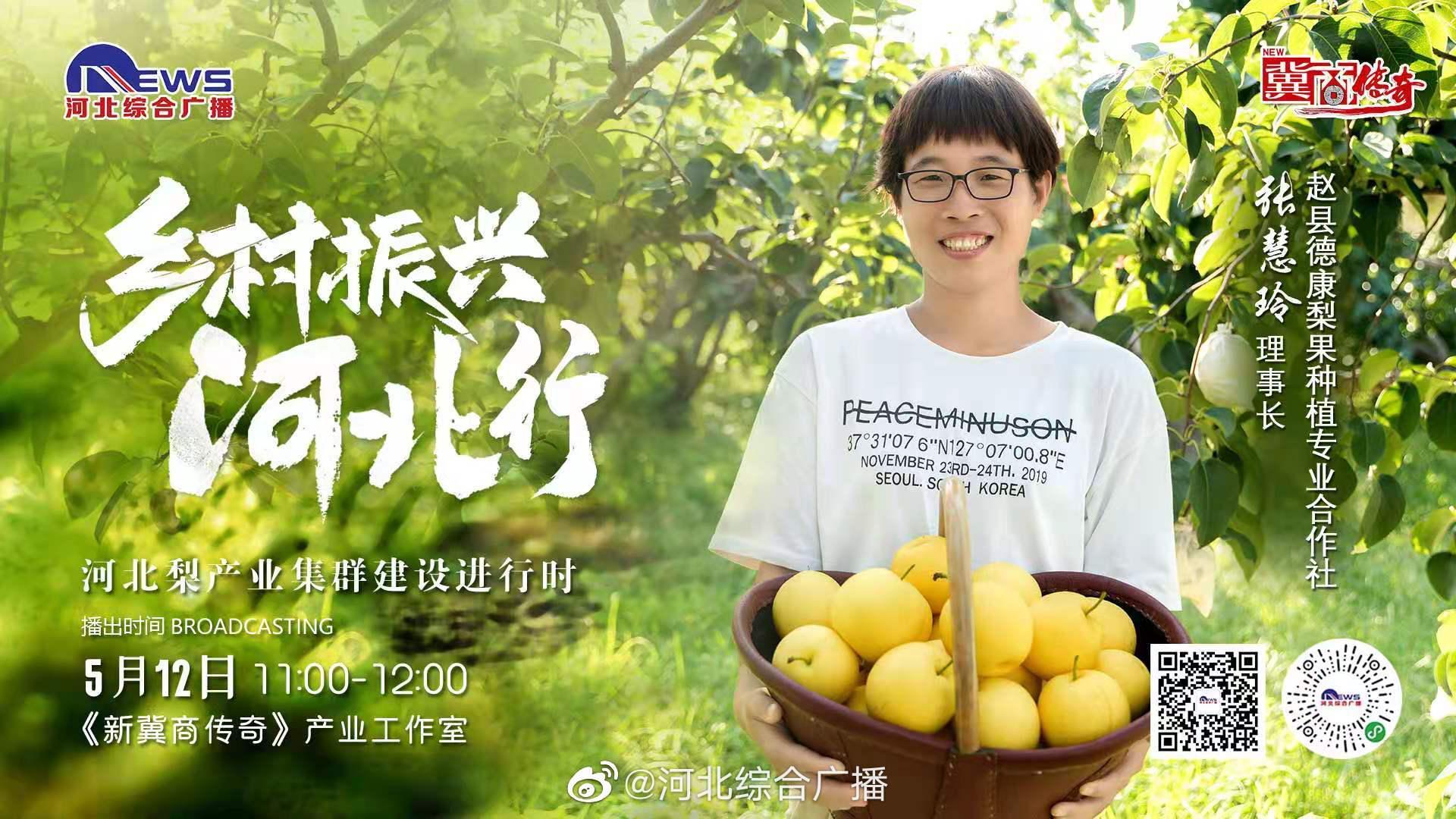 《乡村振兴河北行》梨产业集群建设进行时——第五站赵县!