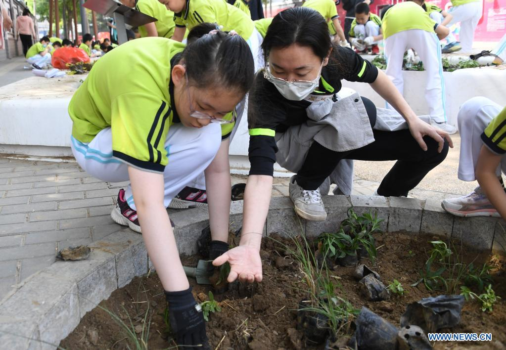 A staff member of a neighborhood committee guides students to plant in Haidian District of Beijing, capital of China, May 11, 2021. (Xinhua/Ren Chao)