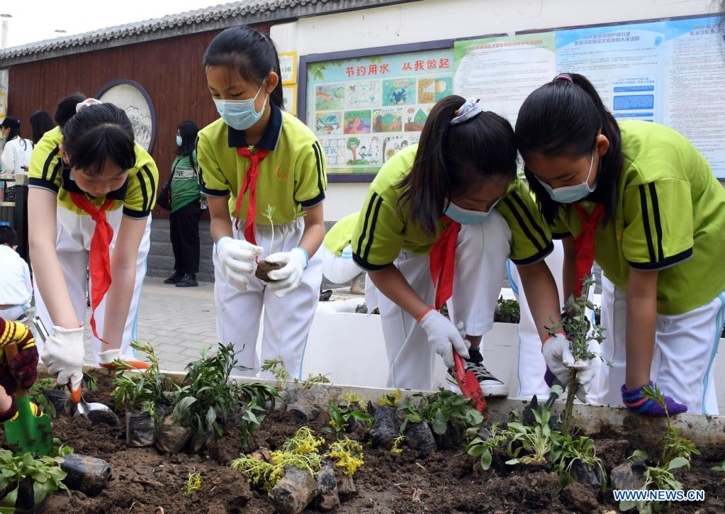 Students plant to beautify the neighborhood in Haidian District of Beijing, capital of China, May 11, 2021. (Xinhua/Ren Chao)