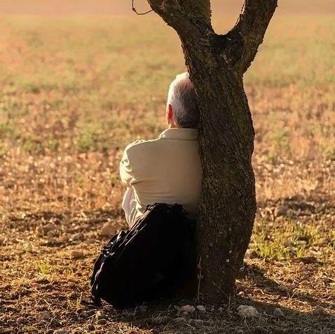 老年痴呆高发,可能与4个坏习惯有关,过了50岁,尽可能改掉