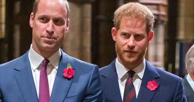 与英国王室对抗到底,哈里将与奥普拉再牵手,揭秘内心悲伤