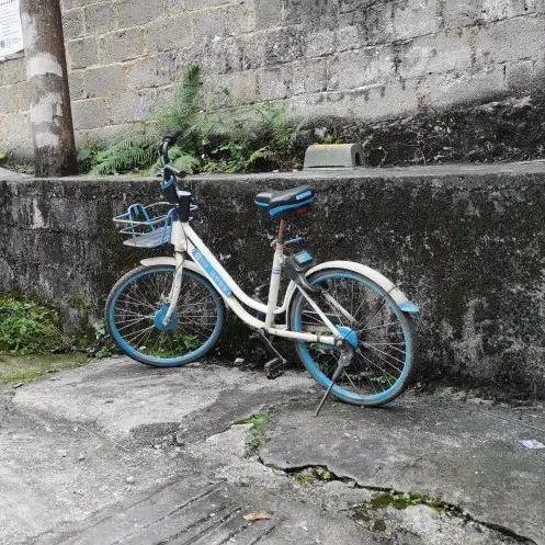 金城江城区的共享单车去哪了?