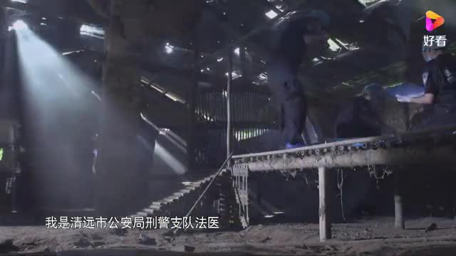 我是党员我带头(20) 吴小洁:粤警追梦法医说