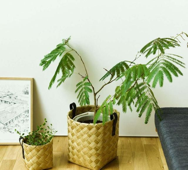 """日本太太的""""极简""""收纳:房间物质少了,生活反而丰富了"""