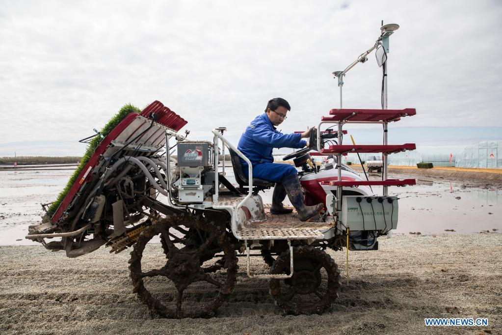 A staff member inspects an unmanned transplanter in a smart agriculture demonstration zone administered by Hongwei Farm Co., Ltd. of Beidahuang Group in northeast China's Heilongjiang Province, May 11, 2021. Equipped with a self-driving system based on the Beidou Navigation Satellite System (BDS), the smart transplanter can independently finish rice transplanting, avoid obstacles and turn around when needed. (Xinhua/Zhang Tao)