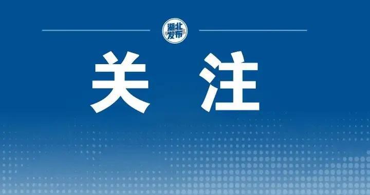 2021年5月11日湖北省新冠肺炎疫情情况(多语种)