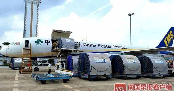 南宁-曼谷全货机航线开通!广西吃货很快就能吃上泰国海鲜
