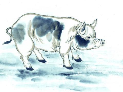 5月17日-5月21日,生肖猪运势大逆转,福星高照财路大开