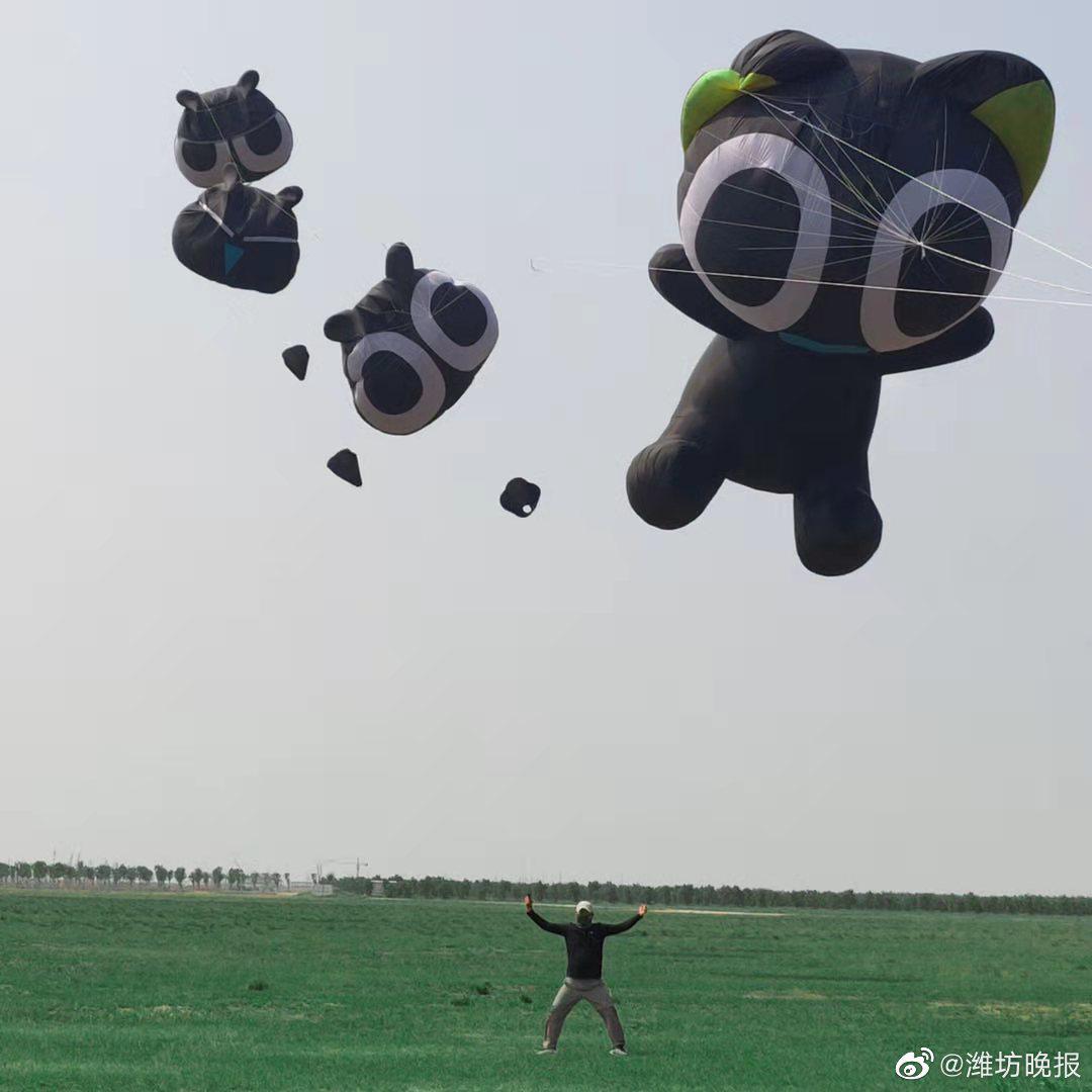 巨型黑猫风筝惊现潍坊上空?!网友:遛猫遛到天上去了!