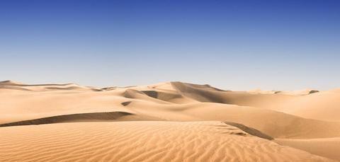 """外国人:中国总是会创造奇迹,养个鸡还把沙漠变成""""绿洲""""了"""