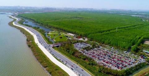 """安徽有一""""森林公园"""",一直是低调的存在,门票免费游客随意进出"""