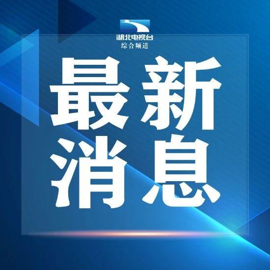 武汉义务教育阶段招生最新政策