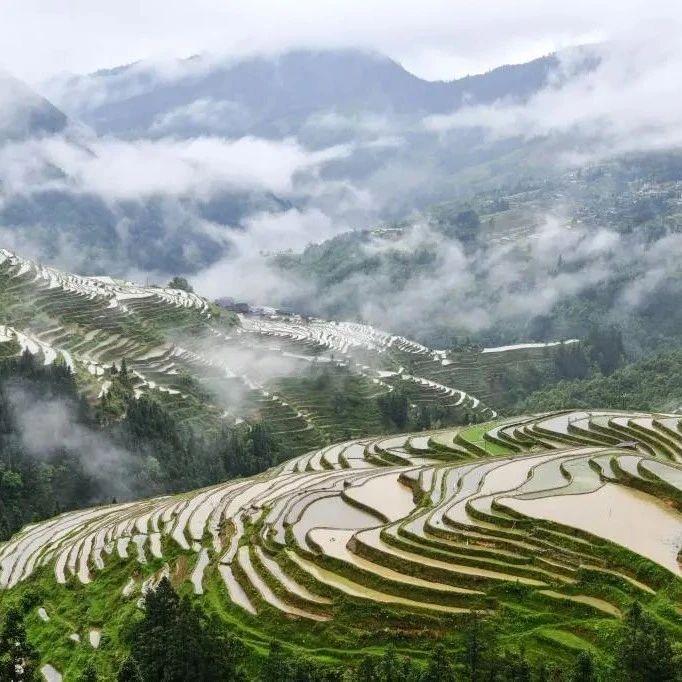 贵州省江县的梯田 Terraces in Jiangxian County, Guizhou Province