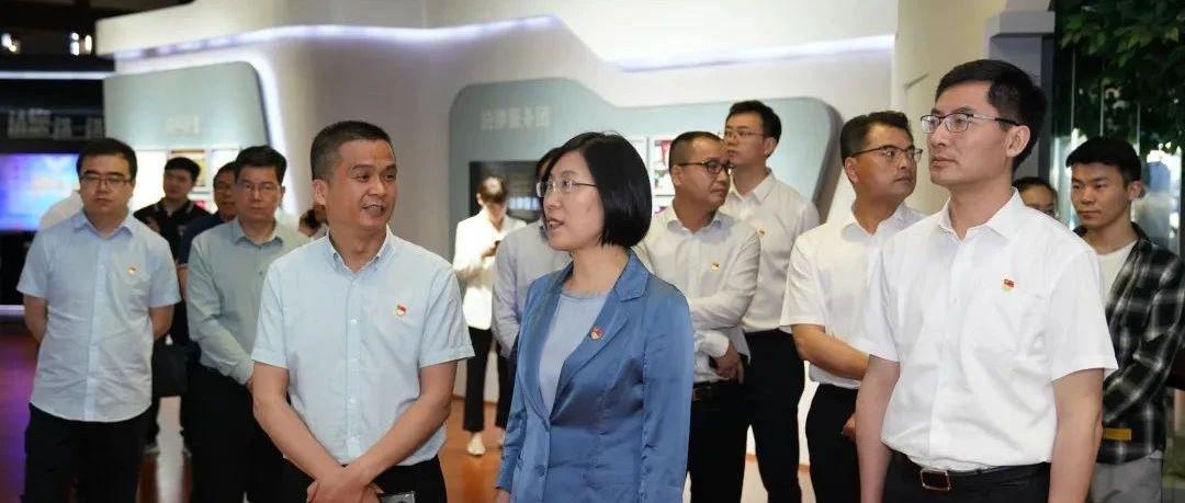 嘉兴市委常委、组织部部长龚和艳来桐调研基层党建工作