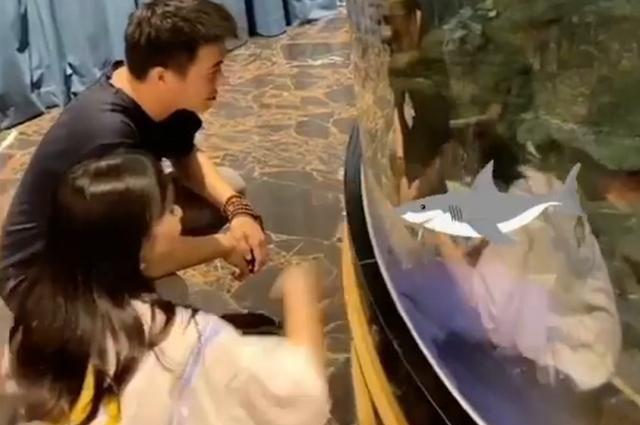 何猷君和美女约会看鱼谈笑风生,不怕老婆吃醋?