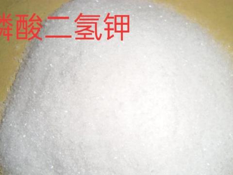 磷酸二氢钾配合尿素,效果出乎意料,叶面喷施效果杠杠滴