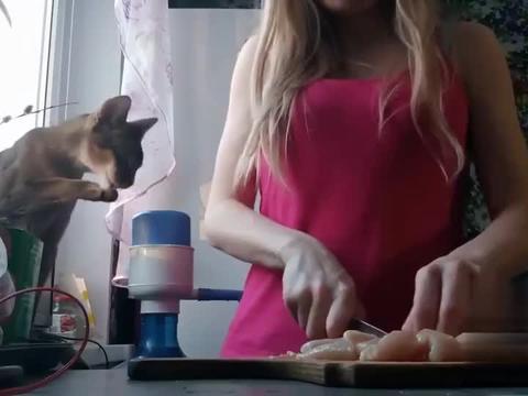 猫咪看到女主人在切肉,猫馋了直拽主人胳膊要肉吃