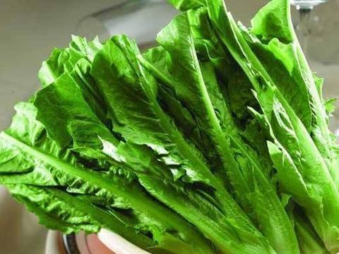 夏天不妨常吃此蔬菜,利尿消肿,静心安神,还能减肥瘦身