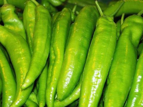 夏天不妨常吃此蔬菜,缓解疲劳,减肥瘦身,还能净化血液
