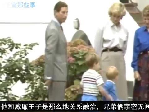 世上只有妈妈好,有妈的孩子是个宝,戴安娜和哈里王子的幸福时光