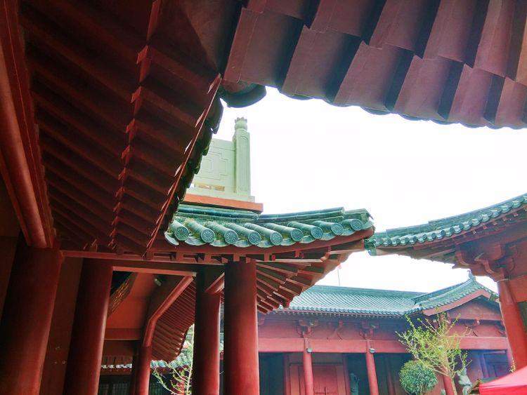 郑州免费寺庙景点,竟意外走红