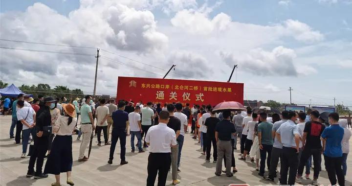 东兴公路口岸(北仑河二桥)入境首批东盟水果