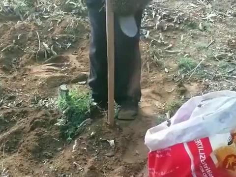 农民伯伯这是挖到什么好东西了,把锄头吸住了,是磁铁吗?