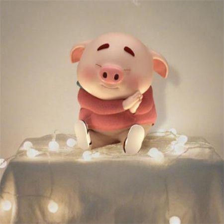 猪猪猪:生肖猪踏入五月份,事业财运大大改善,得到良好的发展