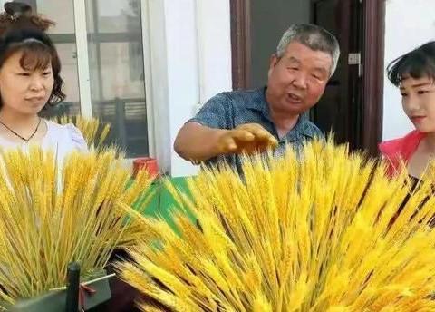 """农夫们会用""""小麦制作的工艺品""""来浪费:多赚钱有什么不好?"""