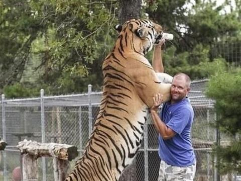 武松真能赤手空拳打死一只老虎吗:和送死没区别