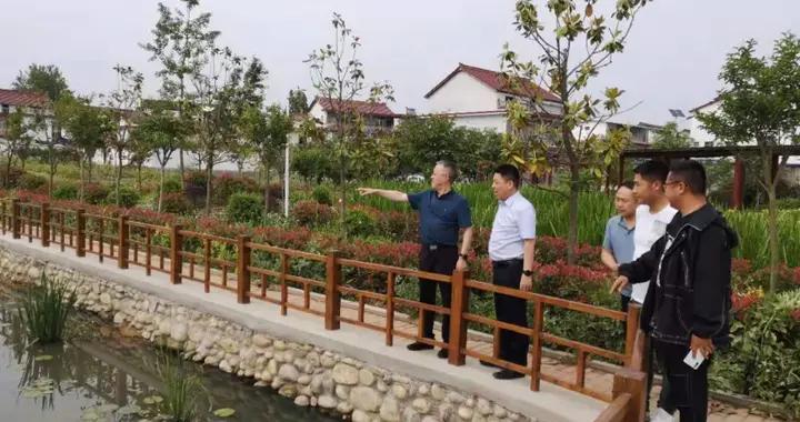 汉台区政府领导调研农村污水治理工作