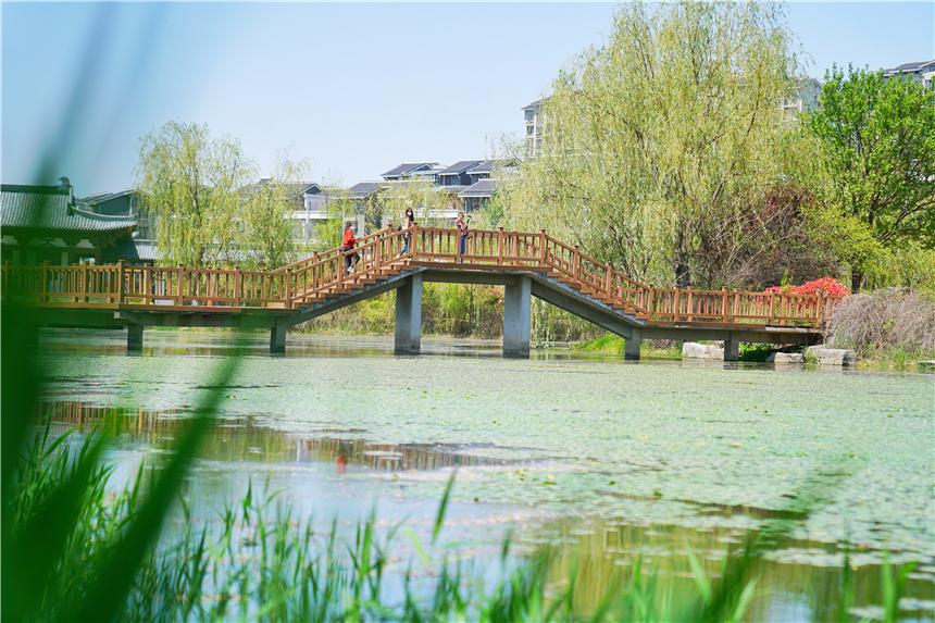 安徽宿州有个江南园林,环境清幽不收门票,一