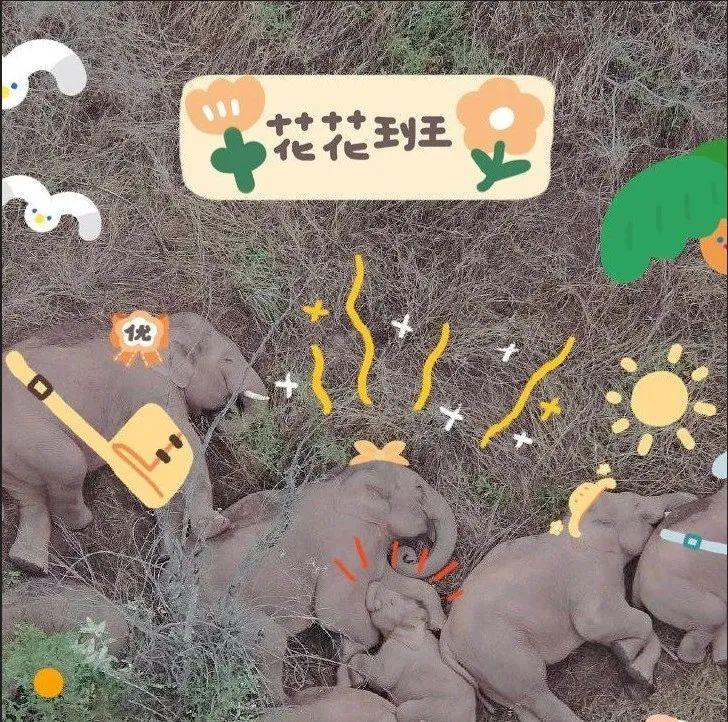 """【跟着大象逛云南 •""""象""""滇记⑤】昆明:""""象""""伴而生的地方"""