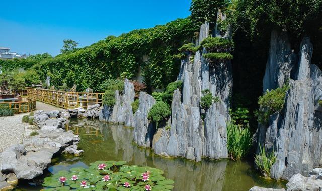 苏州留园,来苏州一定要看的园林之一
