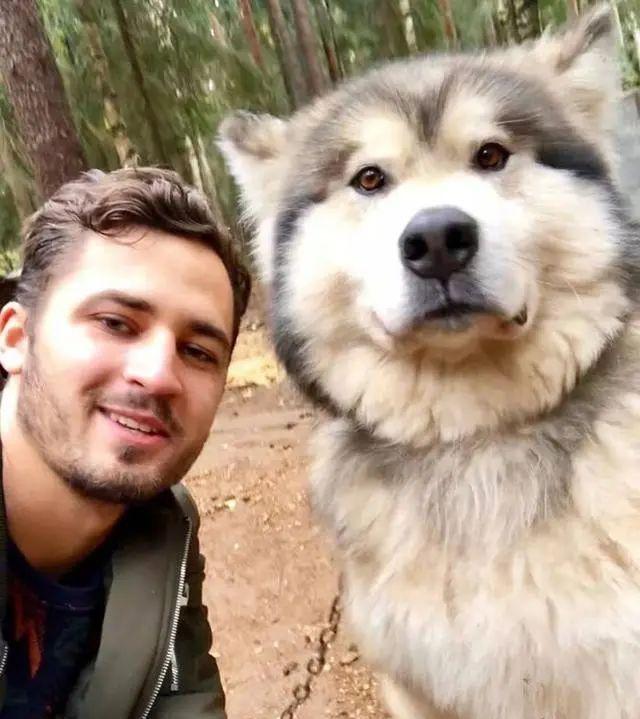 外出游玩发现1只小狗,带回家后越养越觉得不对劲:外国人胆子真大