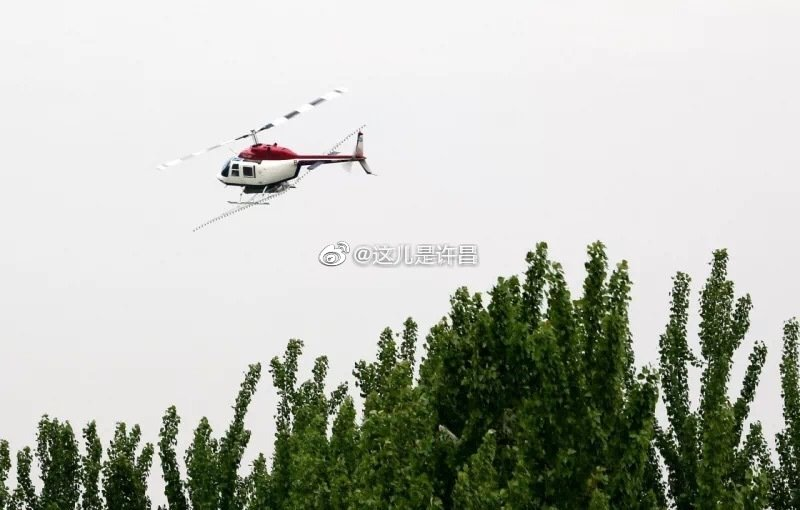 许昌市绿化委员会关于开展飞机防治林木害虫的