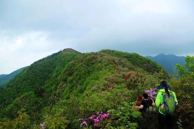 湖南被忽略的景区,四周深山峻岭,冰泉密集,是国家4A级旅游景区