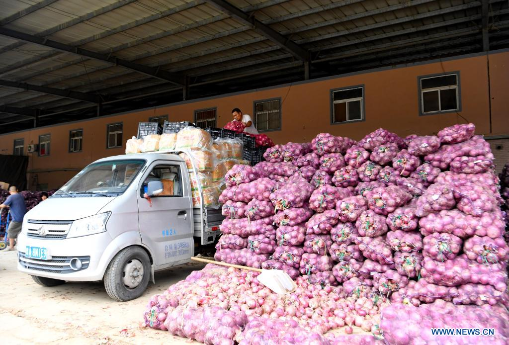 Staff members transport vegetables at a logistic center in Zhongmu County of Zhengzhou, central China's Henan Province, July 22, 2021. Various measures have been taken to ensure supply of agricultural products in Zhengzhou, which was swamped by flood recently caused by heavy rainfall. At present, the supply of vegetables has been adequate with stable price. (Xinhua/Hao Yuan)